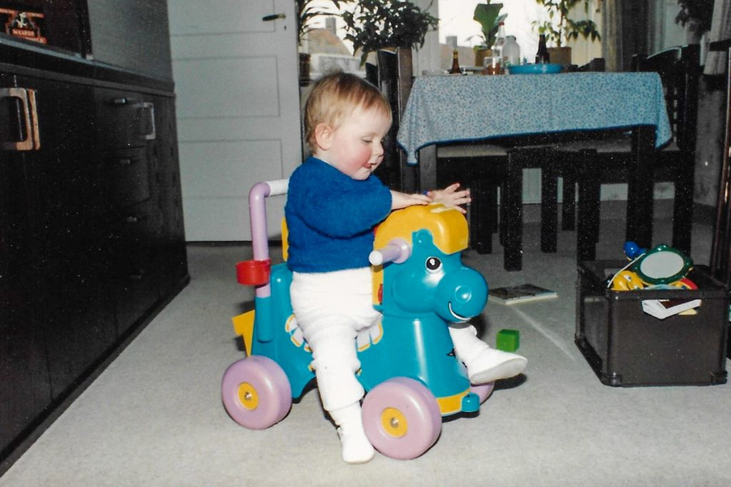 Vroeger blauw paard 1