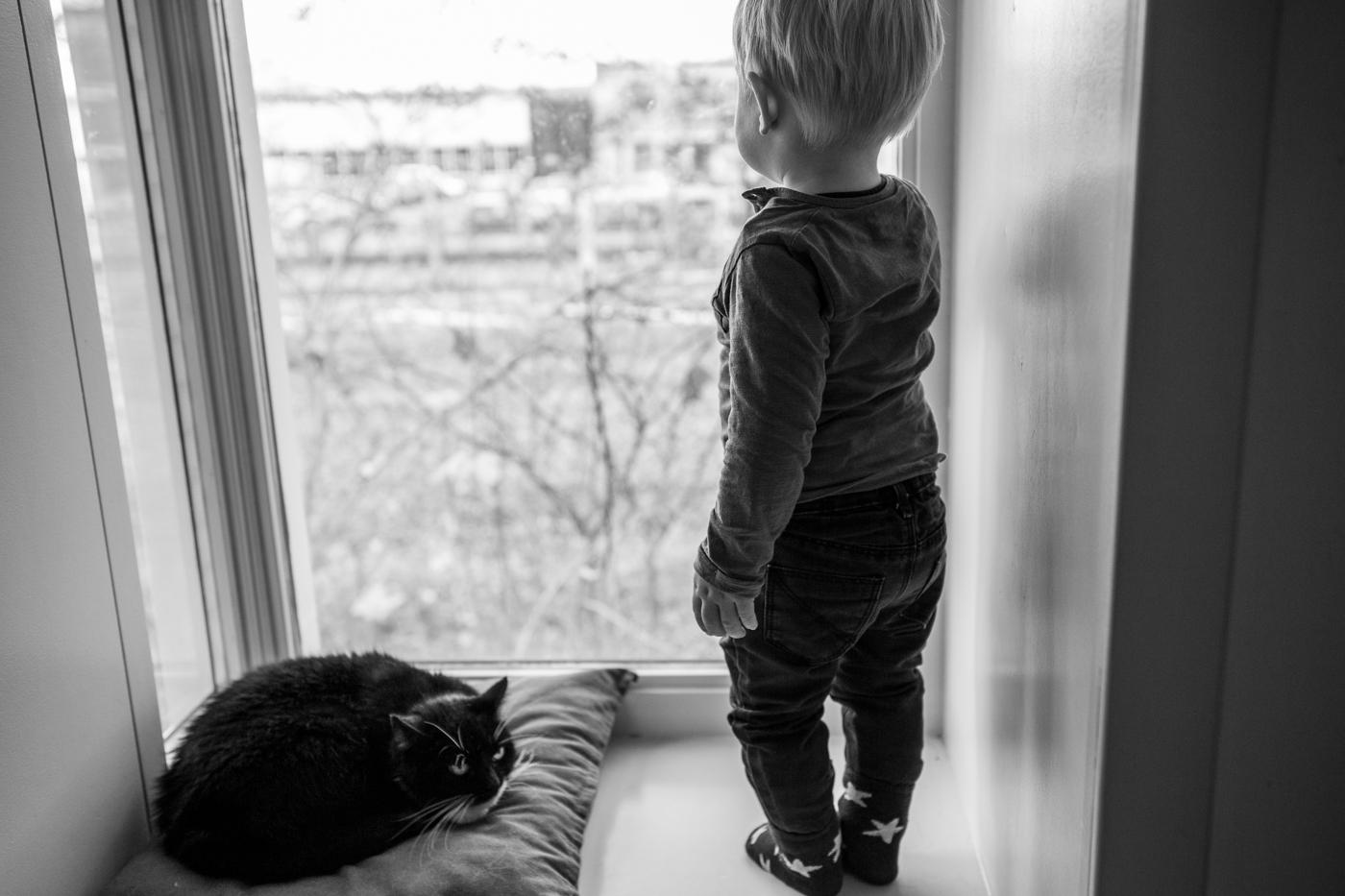 Huisdier_kat_jongetje
